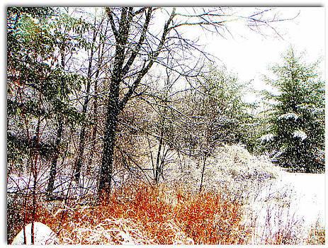 Little January  by Dianne  Lacourciere