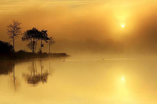 Loch Ard morning glow by Grant Glendinning