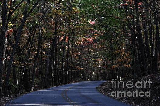 Lonely Road by Dustin Bridges