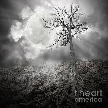 Lonely Tree with Roots Holding The Moon by Angela Waye