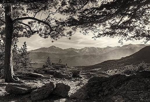 Longs Peak Through the Trees by Steve Barge
