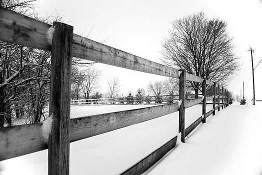 Lwv50041 by Lee Wolf Winter
