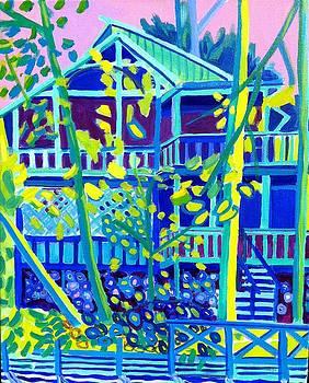 Massapoag Treehouse by Debra Bretton Robinson