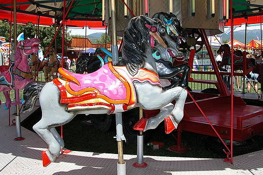 Merry-go-Round Horse by Mary M Collins