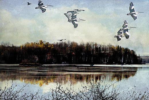 Migration by Margaret Hormann Bfa