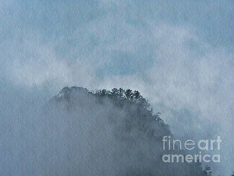 Misty Jungle Peak  by Chris Sotiriadis