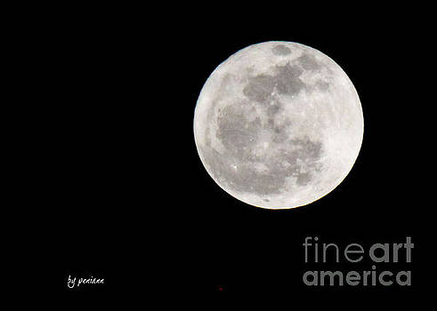Moon by Penny McClintock