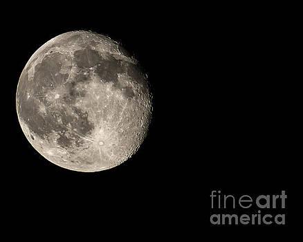 Moon by Scott Wood