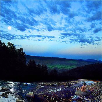 Moonlight Meditation by Ric Soulen