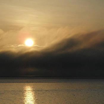 Morning Fog by A Cyaltsa Finkbonner