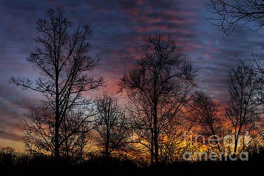 Morning Glow by Debra K Roberts