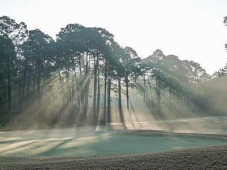 Morning rays by Bill LITTELL