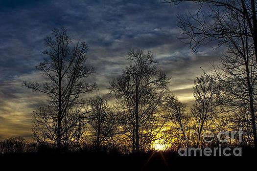 Morning Sun by Debra K Roberts
