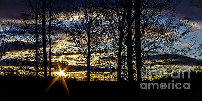 Morning Sunburst by Debra K Roberts