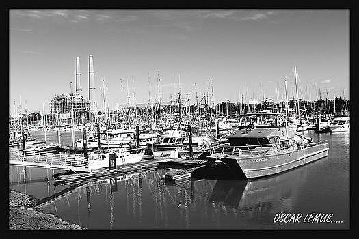 Moss Landing Beauty by Oscar Lemus