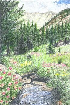 Mountain Stream by Ceilon Aspensen