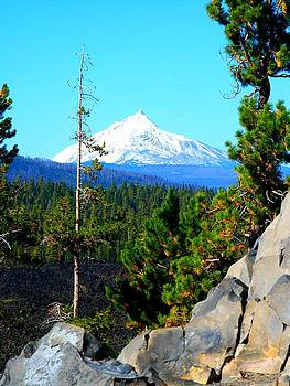 Mt Jefferson by Yvette Pichette