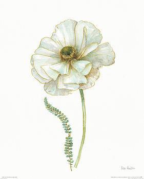 My Greenhouse Single Poppy Ii by Lisa Audit