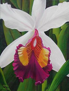 My Orchid FOR SALE by Mary Ann Leake
