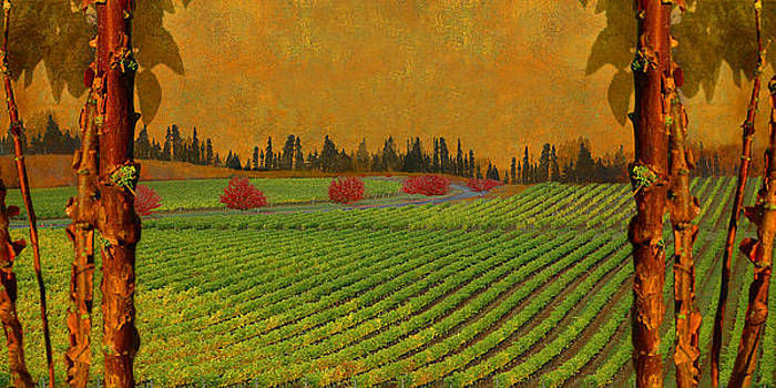 Mythical Vineyard by Jeff Burgess