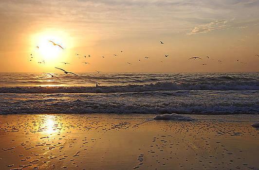 Naples Beach by Lorenzo Cassina