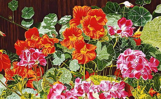 Nasturtiums Garden by Gael Graysen