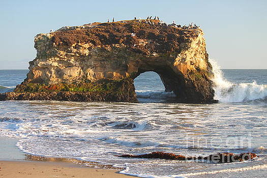 Natural Arches by Bev Conover