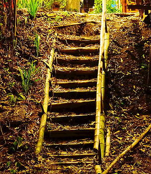 Natural staircase. by Senee Sriyota