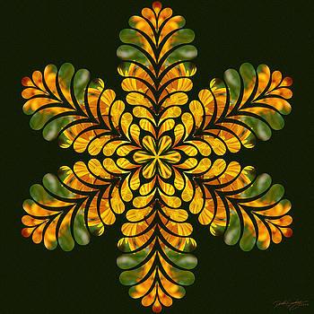 Nature's Mandala 06 by Derek Gedney