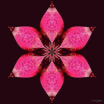 Nature's Mandala 25 by Derek Gedney