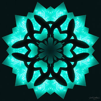 Nature's Mandala 32 by Derek Gedney