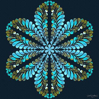 Nature's Mandala 41 by Derek Gedney