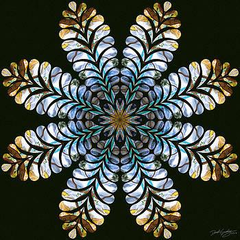 Nature's Mandala 43 by Derek Gedney