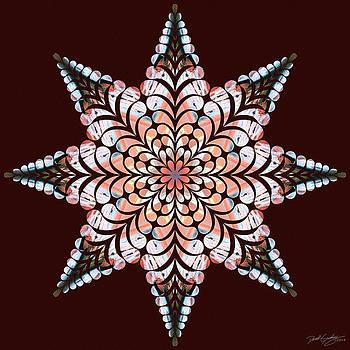 Nature's Mandala 49 by Derek Gedney