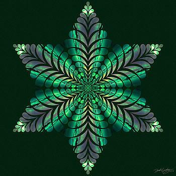 Nature's Mandala 50 by Derek Gedney