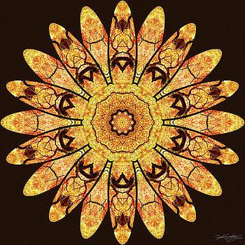 Nature's Mandala 51 by Derek Gedney