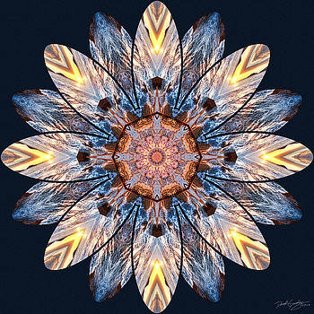 Nature's Mandala 52 by Derek Gedney