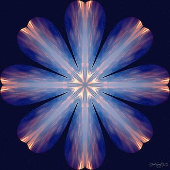 Nature's Mandala 54 by Derek Gedney