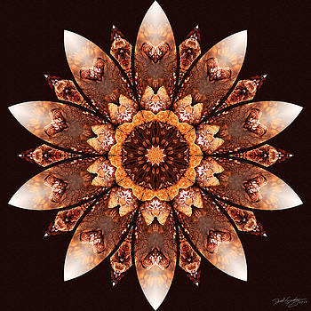 Nature's Mandala 55 by Derek Gedney