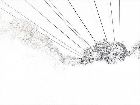 New Horizon by Andrew Morse