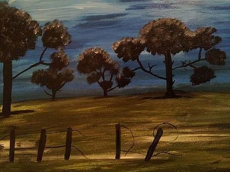 Night Dreams by Tammy  Borden