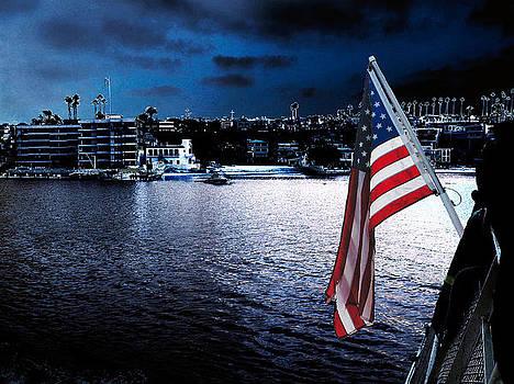 Night Flag by David Murphy