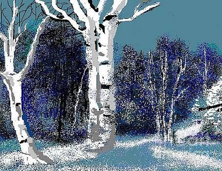 Night Snow by Ruthann  Hanson