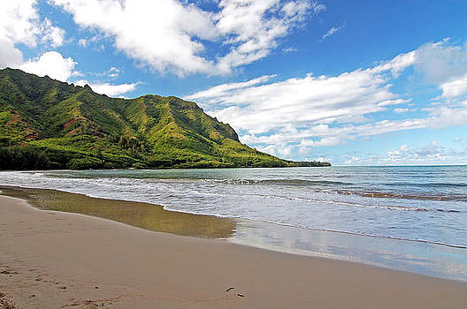North Shore Beach Laie Honolulu Hawaii by Bhupendra Singh