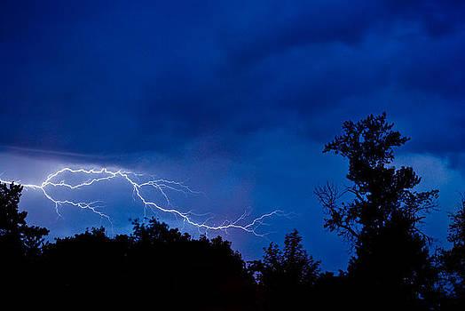 Northwest Lightning by Michael Trofimov