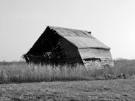 Old Barn by Trevor Hilton