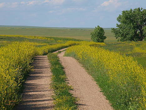 Old Dirt Road by Gordon Collins