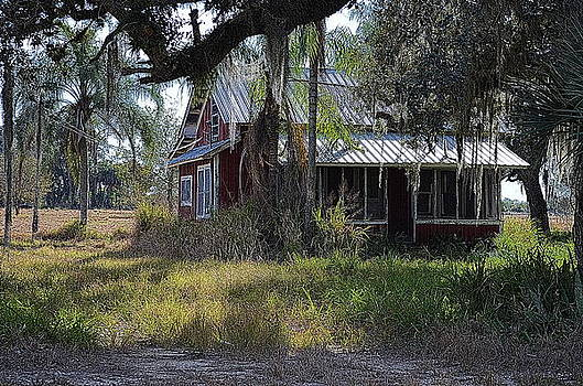 Old Florida House by Ronald T Williams
