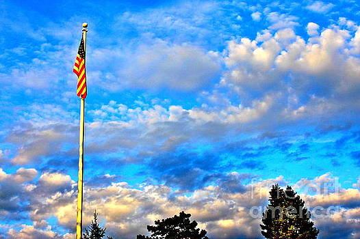 Old Glory - U S Day by Jay Nodianos
