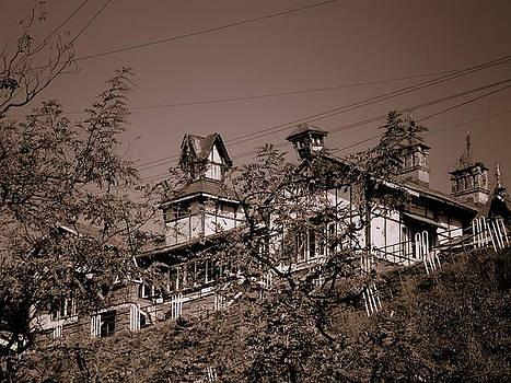Old House by Salman Ravish